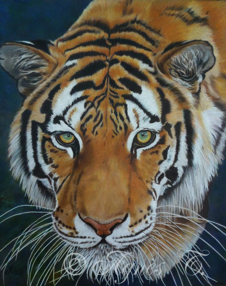 AgnesT-crayons-couleur-Tigre