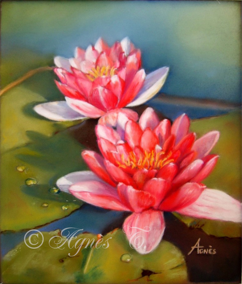 AgnesT-pastels-Nenuphars