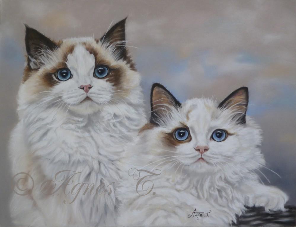 AgnesT-pastels-chats-Nellie-Kristoff