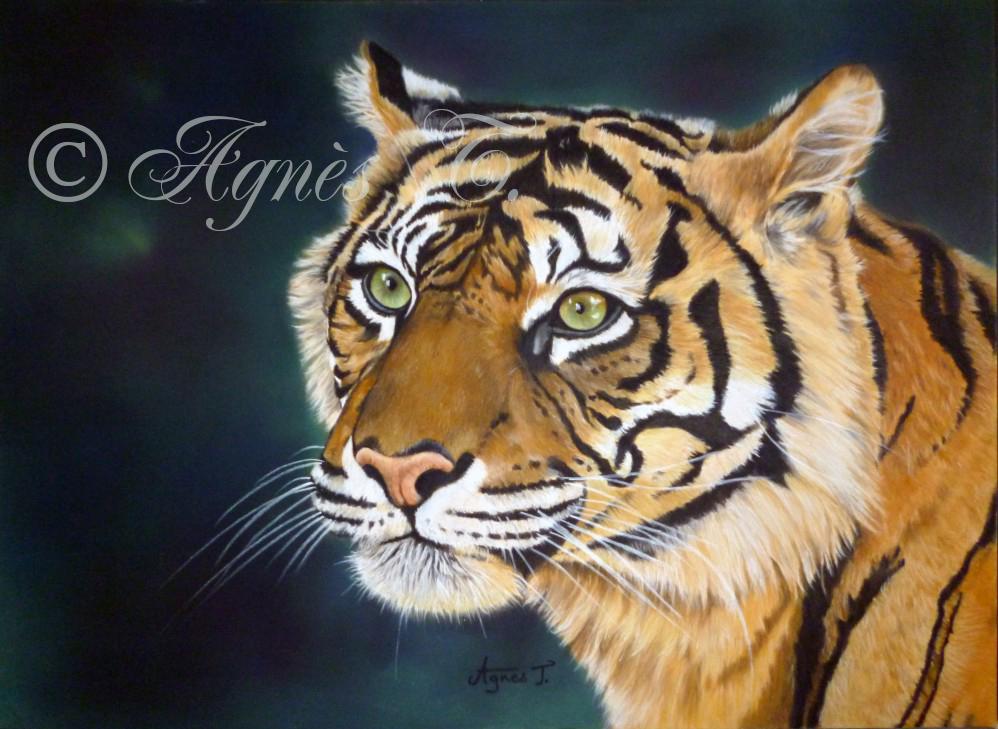 AgnesT-pastels-tigre-3