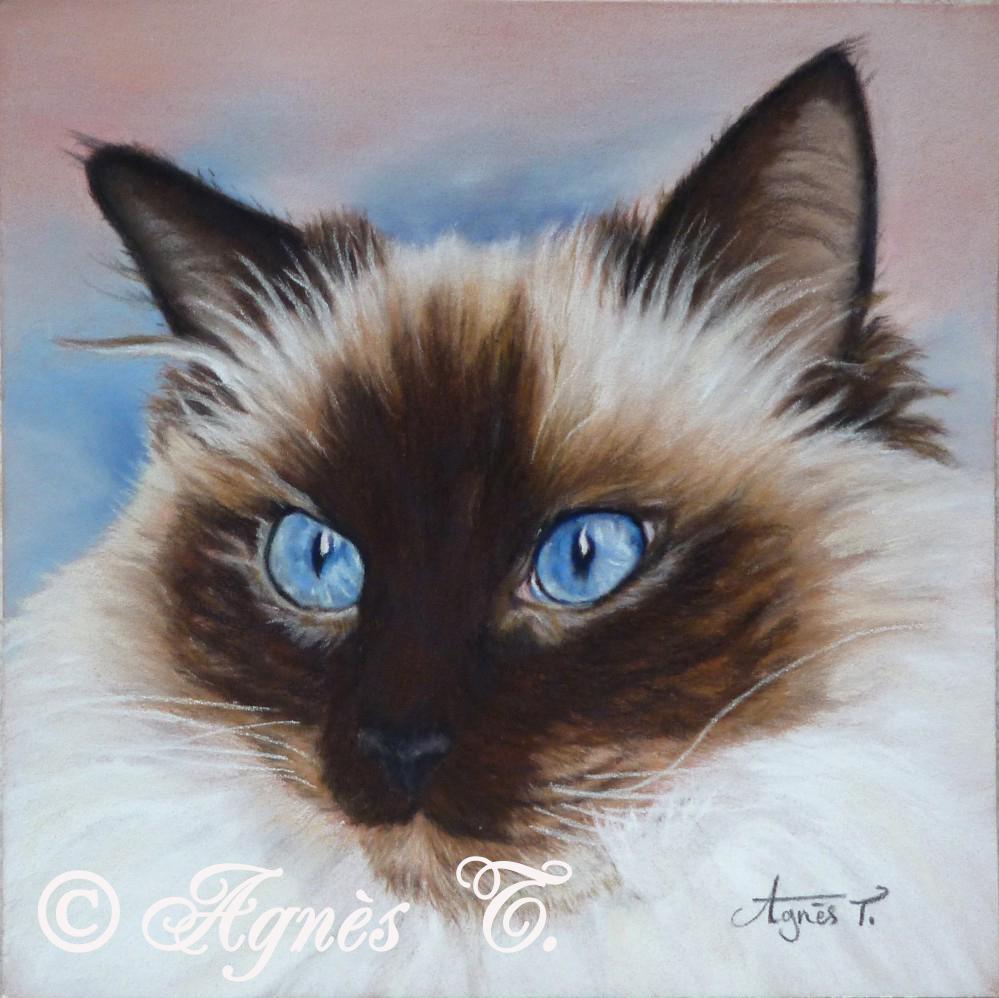 AgnesT-pastels-Bruin
