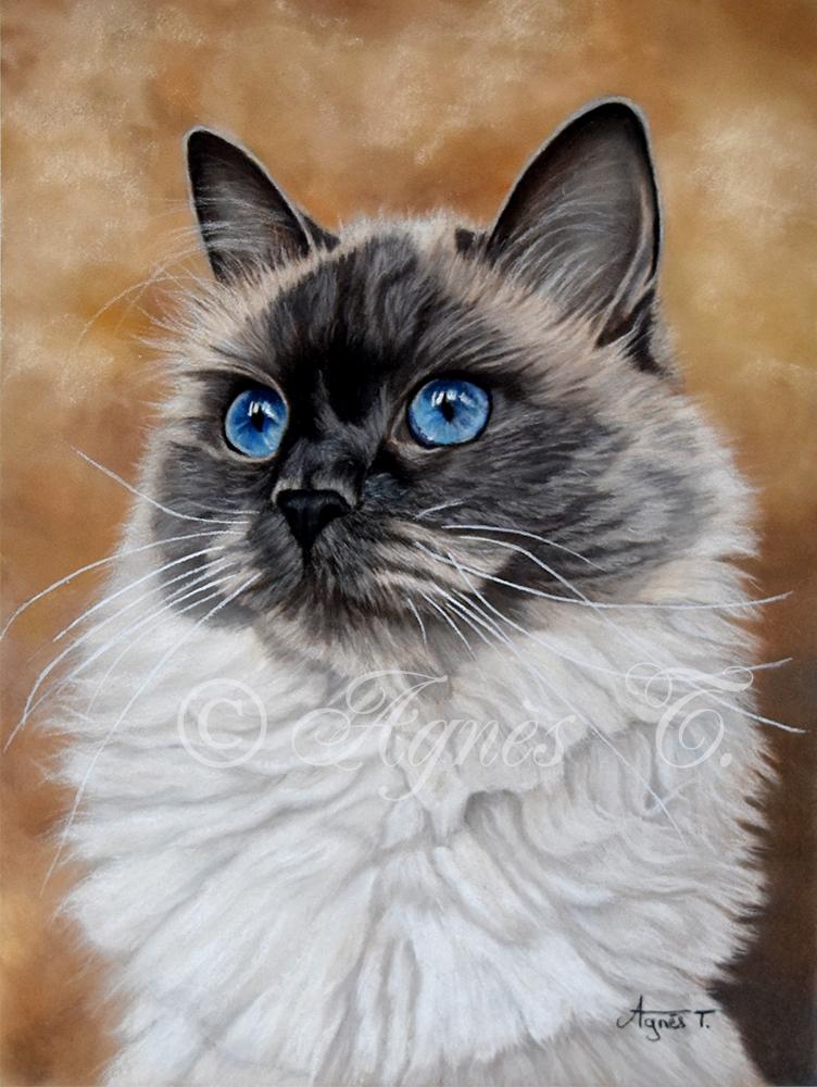 Mona, jolie sibérienne