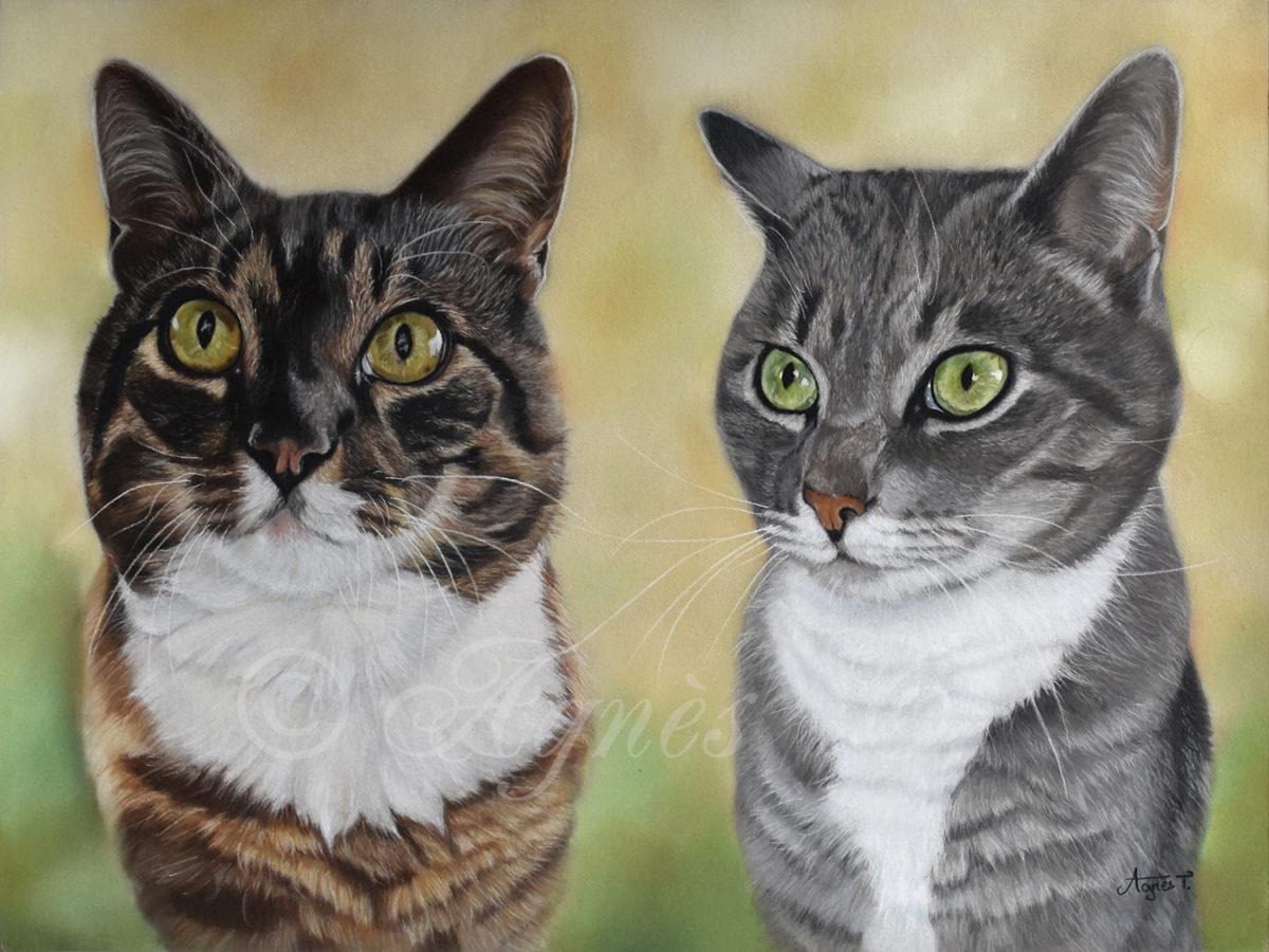 Mauzy et Joschi